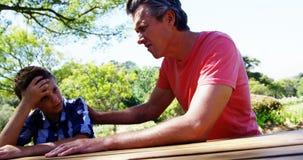 生慰问他的儿子在野餐在公园4k 股票录像