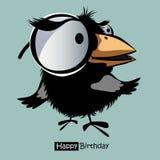 生日快乐滑稽微笑的鸟 库存照片