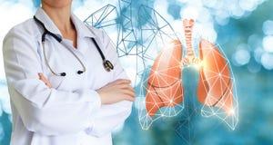 医生显示人的肺 免版税库存图片