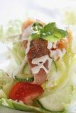 生气勃勃三文鱼沙拉用家庭做的调味汁 免版税库存图片