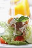 生气勃勃三文鱼沙拉用家庭做的调味汁 库存图片