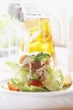 生气勃勃三文鱼沙拉用家庭做的调味汁 库存照片