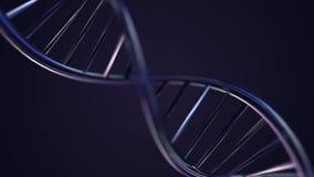生气蓬勃的脱氧核糖核酸链子 蓝色脱氧核糖核酸子线慢动作- 3D动画 皇族释放例证