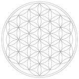 生活传染媒介例证神圣的几何花  库存例证