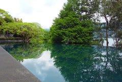 生活在福摩萨海岛 库存图片