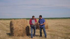 生活方式配合农业聪明的种田的概念 走两名人农夫的工作者学习领域的干草堆  股票录像