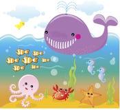 生活水下海洋的海运 向量例证
