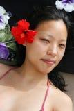 生活热带 图库摄影