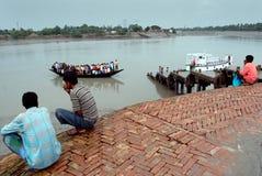 生活sundarban水 库存图片