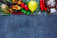 生物健康食物 免版税图库摄影