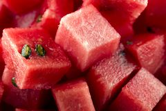 生物切成小方块的西瓜 免版税图库摄影