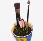生物化妆用品、构成、秀丽和健康 库存照片