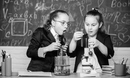 生物学校教训 女孩在学校实验室 正式学校教育 化学研究 一点科学家工作 免版税图库摄影