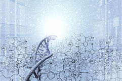 生物工艺学基因研究 图库摄影