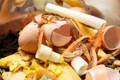 生物废物,腐烂的食物,残羹剩饭 免版税库存照片