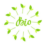 生物手拉的商标,与绿色花卉框架的标签,与叶子和新芽 导航例证食物的eps 10并且喝 免版税库存照片