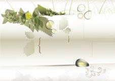 生物构思设计 免版税库存图片