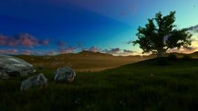 生物演化谱系图解在一个绿色草甸的,早晨阴霾 向量例证