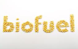 生物燃料我 免版税库存图片