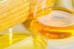 生物燃料或玉米糖浆新鲜玉米 免版税库存图片
