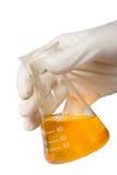 生物燃料新的测试 免版税库存图片