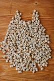 生物燃料-在木桌的小木药丸 库存照片
