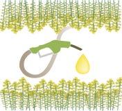 生物燃料 免版税库存照片