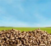 生物燃料 免版税图库摄影