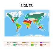 生物群系 地球生态系 向量例证