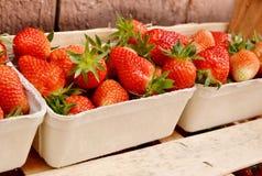 生物草莓 图库摄影