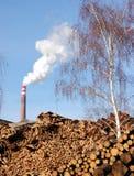 生物量工厂木头 库存图片