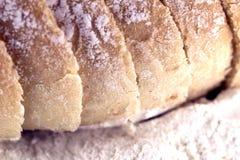生物面包 免版税库存照片