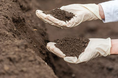 生物食物生产 免版税库存图片