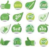 生物eco绿色集合贴纸 免版税库存图片