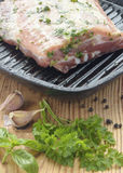 生肉片断用卤汁泡与草本,大蒜和菜油 免版税库存照片