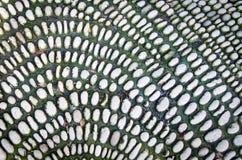 生苔小卵石 老石渣的背景纹理 免版税图库摄影
