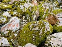 生苔岩石弗朗兹约瑟夫谷 免版税库存照片