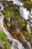 生苔岩石瀑布 免版税图库摄影