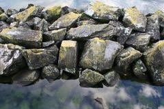 生苔岩石 免版税图库摄影