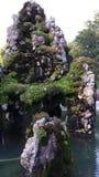 生苔岩石 免版税库存图片