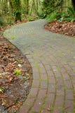 生苔弯曲的砖路径 库存照片