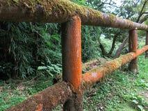 生苔木楼梯栏杆 库存图片