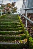 生苔楼梯在城市 库存照片