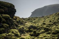 生苔熔岩岩石,冰岛 免版税库存照片