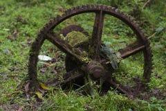 生苔生锈的嵌齿轮轮子 免版税图库摄影