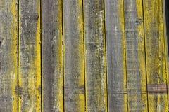生苔的谷仓 库存照片