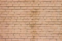 生苔石墙纹理 免版税库存照片