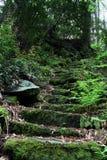 生苔石步 库存图片
