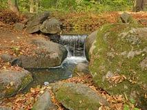 生苔石头和下落的叶子在瀑布附近 库存图片