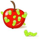 生虫的苹果 免版税库存图片